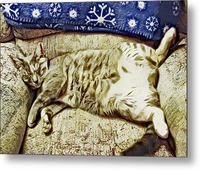 Nap Position Number 16 Metal Print by David G Paul