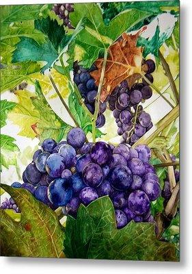 Metal Print featuring the painting Napa Harvest by Lance Gebhardt