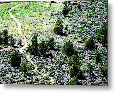 Narrow Is The Path Metal Print