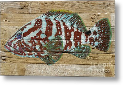 Nassau Grouper Metal Print by Danielle Perry