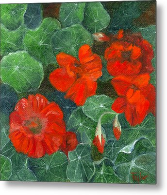 Nasturtiums Metal Print by FT McKinstry