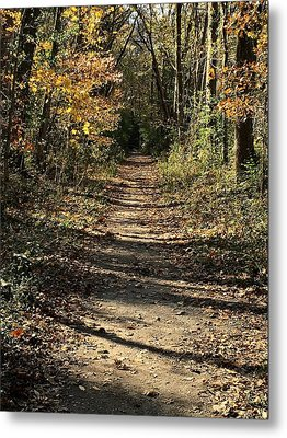 Natchez Trace In Warner Park Metal Print