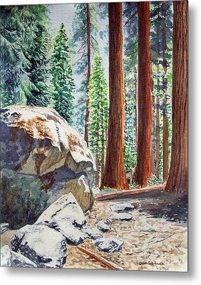 National Park Sequoia Metal Print