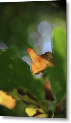 Natural Abstract Metal Print by Odd Jeppesen