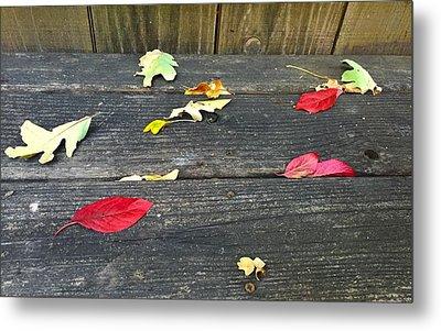 Natural Fall Metal Print
