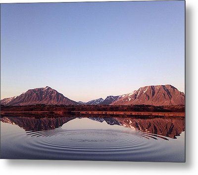 Natural Symmetry Metal Print by Happy Home Artistry