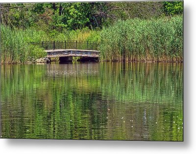 Nature In Green Metal Print by Mikki Cucuzzo