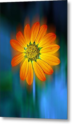 Nature In Motion Metal Print by Wendy Mogul