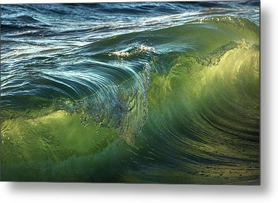 Metal Print featuring the photograph Nature Never Ceases To Amaze by Peter Thoeny
