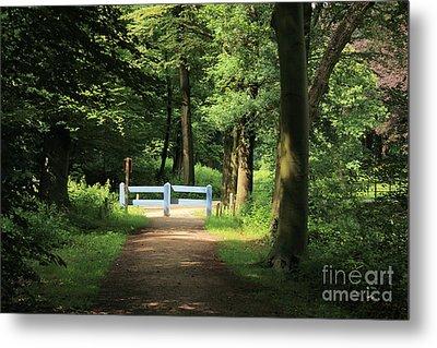 Nature Reserve Netherlands  Metal Print