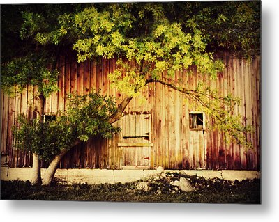 Natures Awning Metal Print by Julie Hamilton