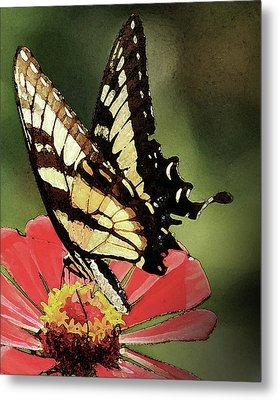 Nature's Beauty Metal Print by Kim Henderson