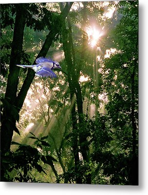 Metal Print featuring the photograph Nature's Cathedral by Marie Hicks