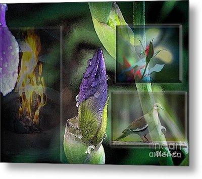 Natures Collage Metal Print