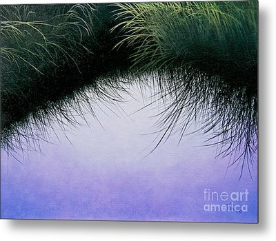 Metal Print featuring the painting Nature's Eyelashes by Cindy Lee Longhini