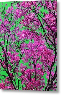 Metal Print featuring the photograph Natures Magic - Pink And Green by Rebecca Harman