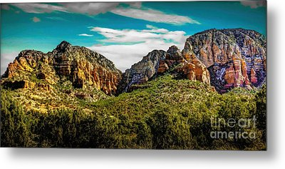 Natures Paintbrush Metal Print by Jon Burch Photography