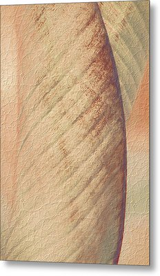 Nature's Plant Leaf Abstract Metal Print by Julie Palencia