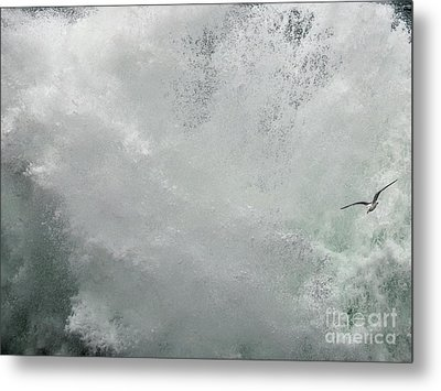 Metal Print featuring the photograph Nature's Power by Peggy Hughes