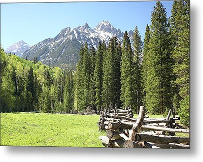 Nature's Song Metal Print by Eric Glaser