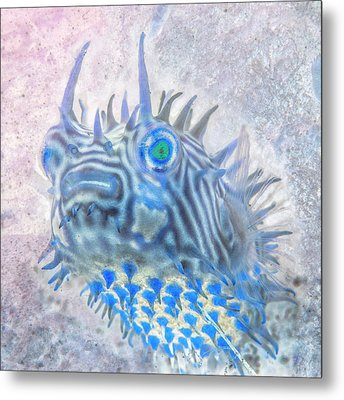 Metal Print featuring the photograph Nautical Beach And Fish #12 by Debra and Dave Vanderlaan