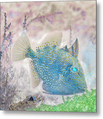 Metal Print featuring the photograph Nautical Beach And Fish #2 by Debra and Dave Vanderlaan