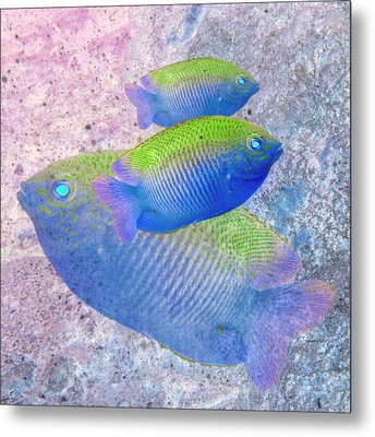 Metal Print featuring the photograph Nautical Beach And Fish #3 by Debra and Dave Vanderlaan