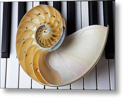 Nautilus Shell On Piano Keys Metal Print by Garry Gay