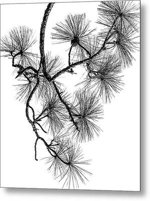 Needles II Metal Print