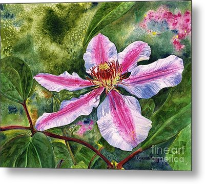 Nelly Moser Clematis Metal Print