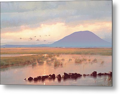 Nephin Dawn Metal Print by Conor McGuire