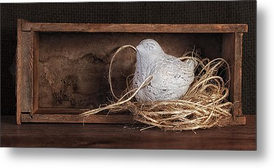 Nesting Bird Still Life II Metal Print by Tom Mc Nemar