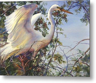 Nesting Egret Metal Print by Sue Zimmermann