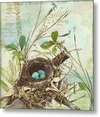Nesting I Metal Print by Mindy Sommers