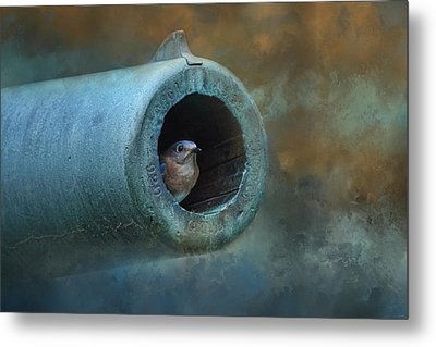 Nesting In Cannon 61 Metal Print