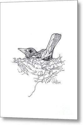 Nesting Metal Print by Michael Ciccotello