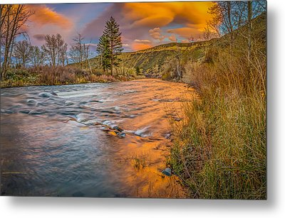 Metal Print featuring the photograph Nevada Gold  by Scott McGuire