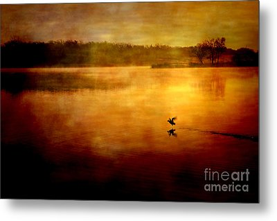 New Day Surrounded By Nature Metal Print