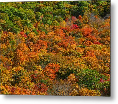 New England Fall Foliage Peak  Metal Print by Juergen Roth