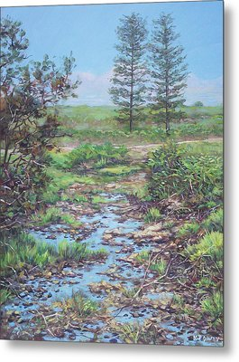 New Forest Ditch Metal Print by Martin Davey