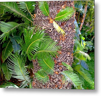 New Palms Metal Print by Mindy Newman