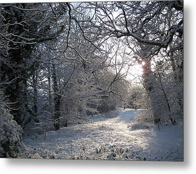 New Year's Day Morning. Metal Print