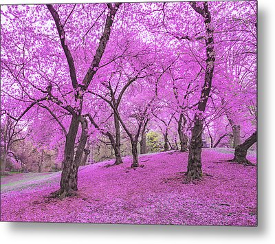 New York City Springtime Metal Print by Vivienne Gucwa
