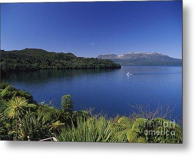 New Zealand, Rotorua Metal Print by Greg Vaughn - Printscapes
