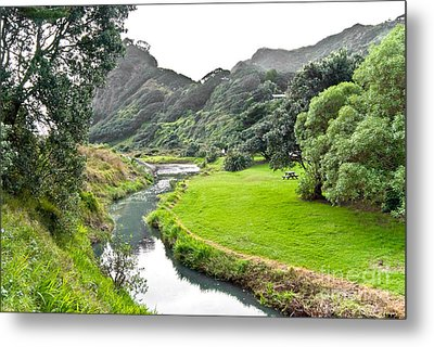 Metal Print featuring the photograph New Zealand Scenery by Yurix Sardinelly