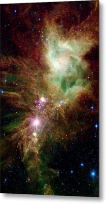 Newborn Stars Metal Print by American School