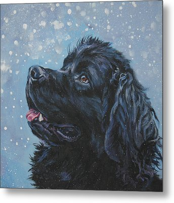 Newfoundland In Snow Metal Print