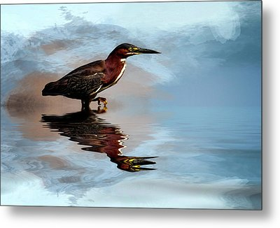 Next Step Metal Print by Cyndy Doty