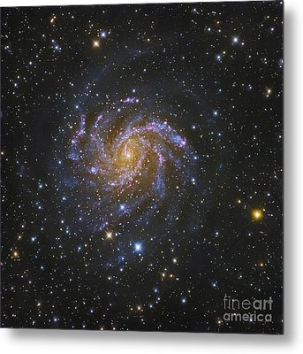 Ngc 6946, Also Known As The Fireworks Metal Print