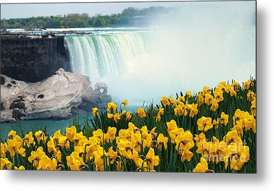 Niagara Falls Spring Flowers And Melting Ice Metal Print by Charline Xia